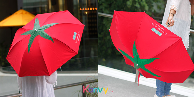 Hi-Balanz Lycopene Umbrella_3