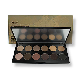 4U2 I-Pro 12 Professional Eye Palette #Earth 24g