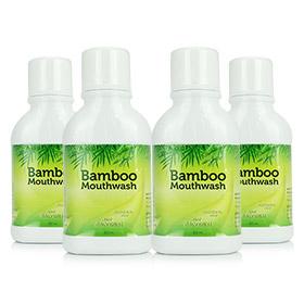 HyLife Bamboo Mouthwash (300ml x4)