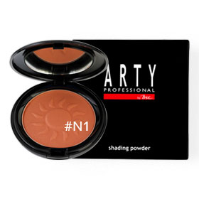 Arty Professional Shading Powder 11g #N1