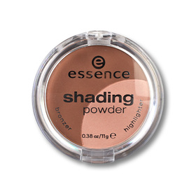 Essence Shading Powder 11g #02