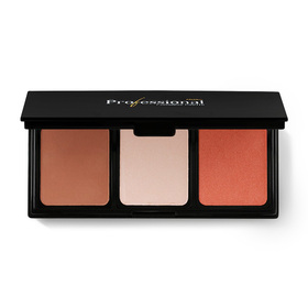 Mistine Professional Complete Palette #02 Orange