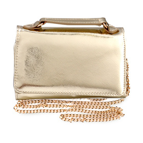 Shiseido Carry Wallet (Golden)