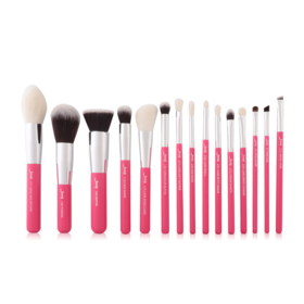 Jessup Professiomal Makeup Brushes Set 15pcs #T200 Rose Carmin/Silver