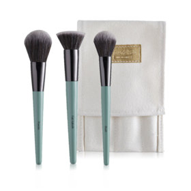 BrushToo Essential Set